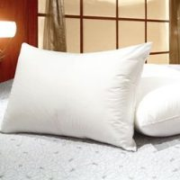 White Goose Feather and Goose Down Pillows